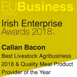 Irish Enterprise Awards Winners